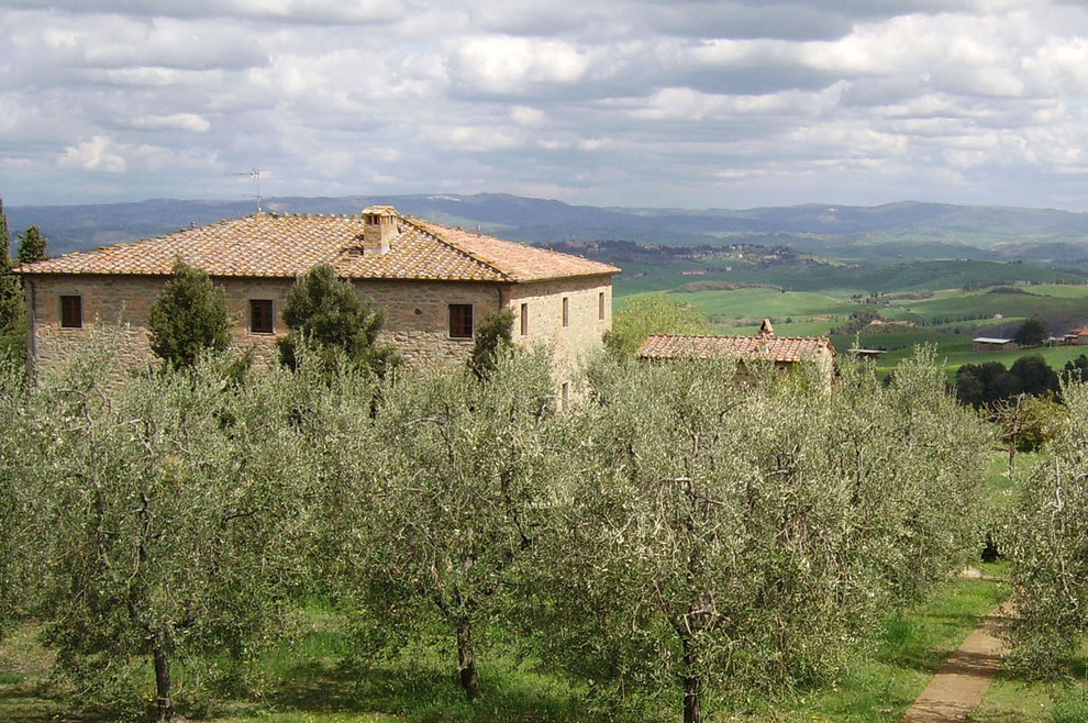 Pisan hills, villas and farmhouses for sale in contact with nature