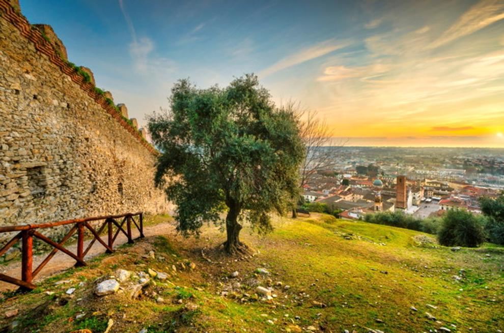 La Rocca di Sala: uno sguardo su Pietrasanta e le sue ville di lusso