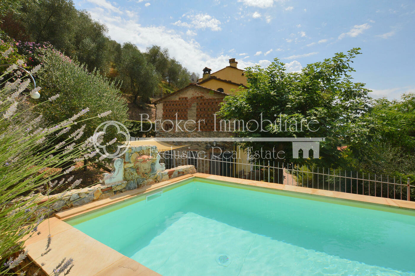 Casale in vendita in Versilia con piscina e oliveto a Massaciuccoli
